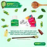 Ever E250 DIY Challenge